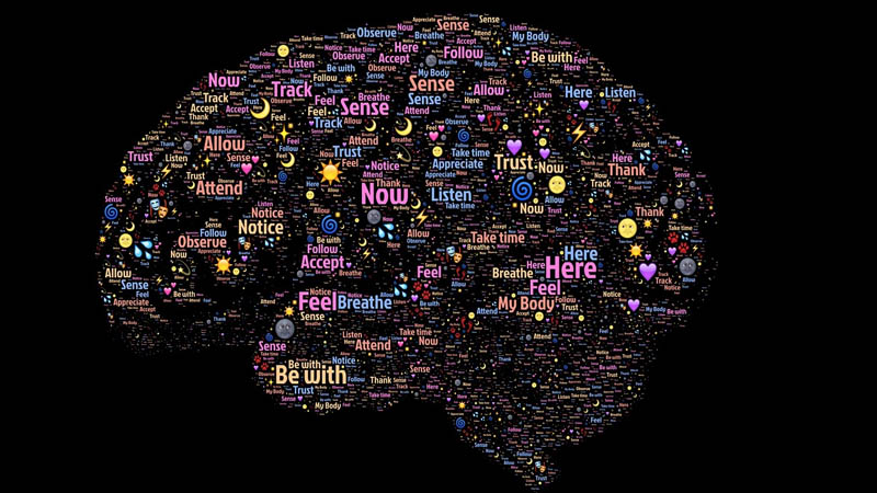 ¿Como afecta nuestro cerebro la meditacion?